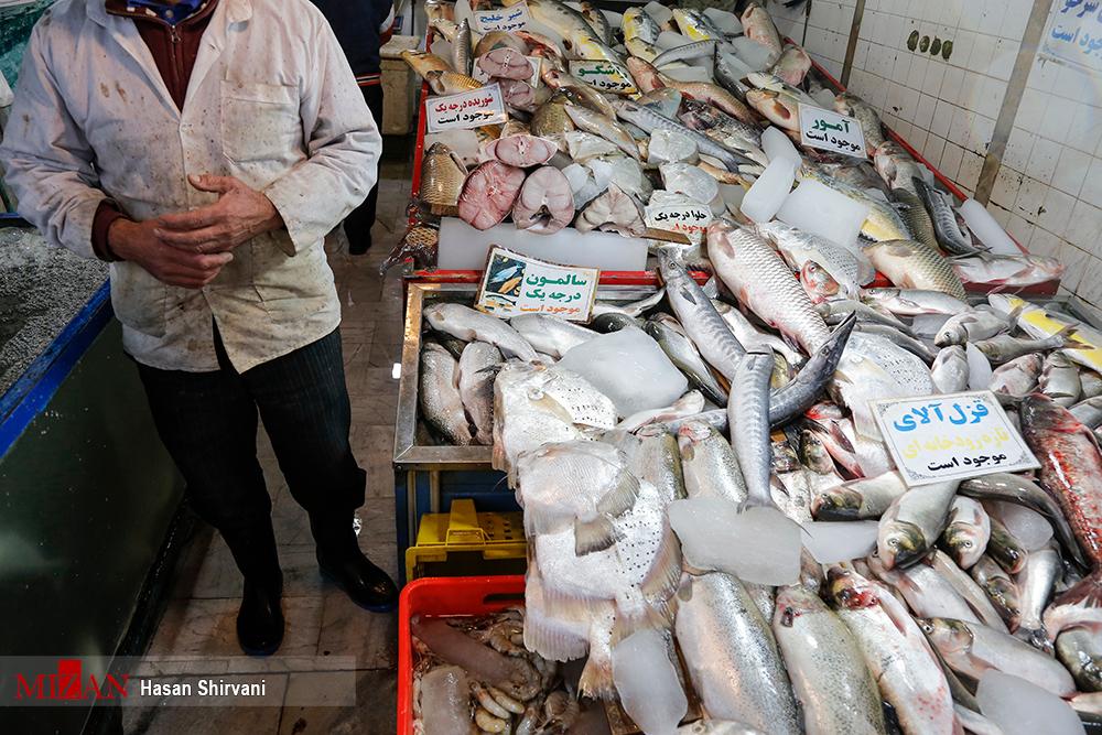 فروش کوسه ماهی به جای شیر ماهی