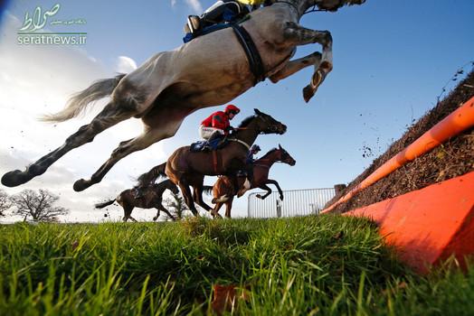 مسابقات اسب سواری در تاونتون انگلیس
