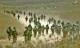 حملات موشکی میان لبنان و رژیم صهیونیستی