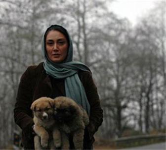 عکس/ سگ های هدیه تهرانی