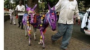 اعطای نشان افتخار به دو خر در هند +عکس