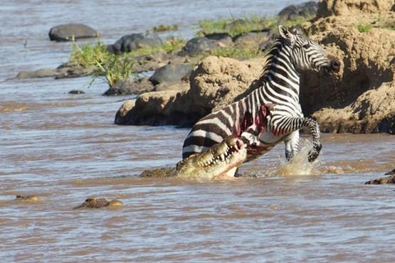 رودخانه مرگ در کنیا