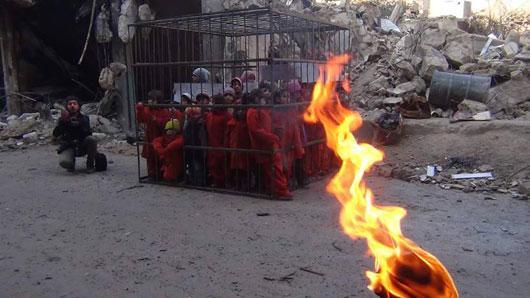 کودکانسوری در قفسهای داعش +عکس