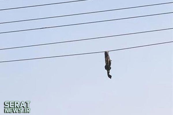 عکس/ جسد یک نظامی روی سیم برق