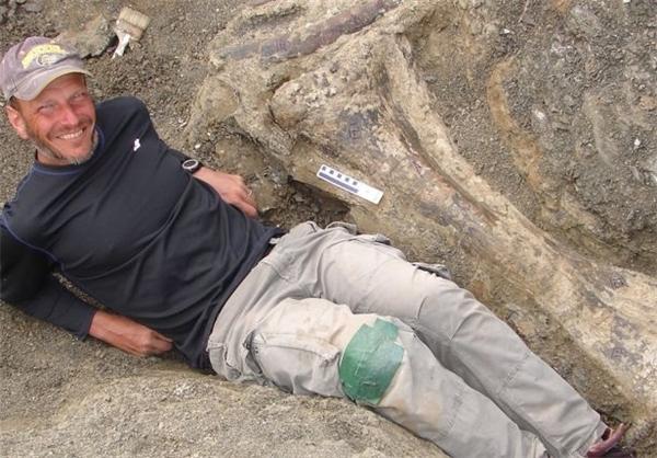 کشف بزرگترین اسکلت دایناسور+عکس