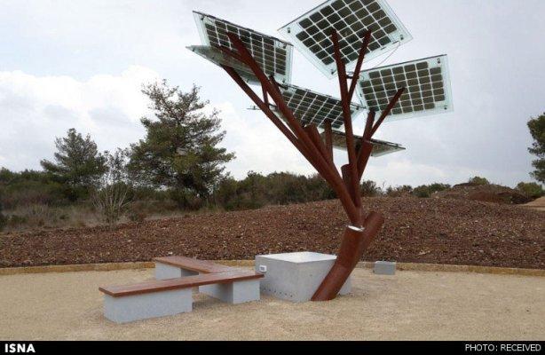 درختی باقابلیت وایفای و شارژتلفن+عکس