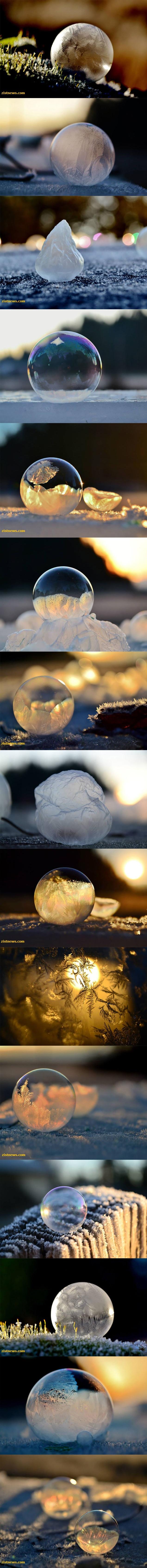 تصاویر/ زندگی در حباب