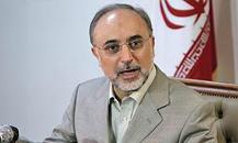 صالحی: هیچ بازرسی مجددی را نمیپذیریم