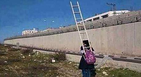 دختری که با نردبان به مدرسه میرود! +عکس