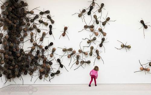 تصاویر حمله مورچهها به کاخ رئیسجمهور
