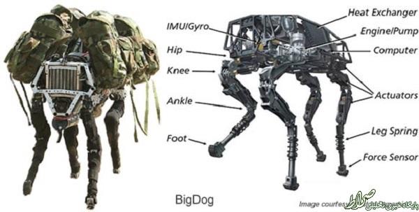 سگ 32 میلیون دلاری آمریکا +تصاویر