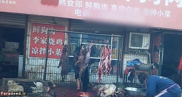 (تصاویر) «سگکشی» هولناک در چین