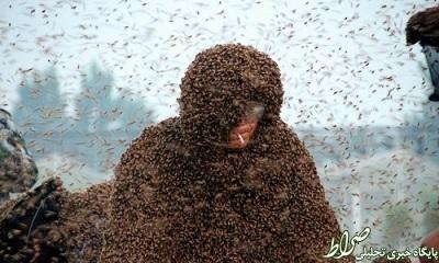 عکس/ رکورد یک میلیون زنبور روی بدن