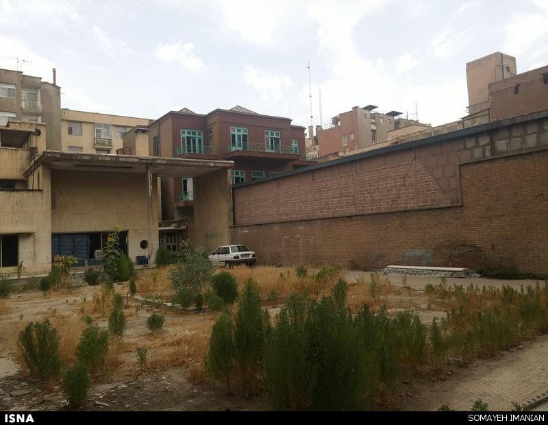 دامداری در وسط شهر تهران! +تصاویر