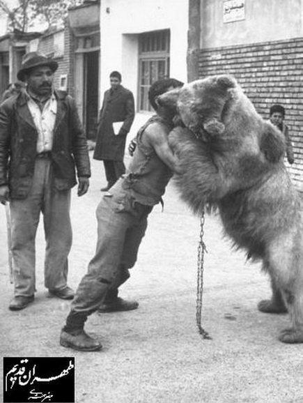 کُشتی با خرس در تهران قدیم