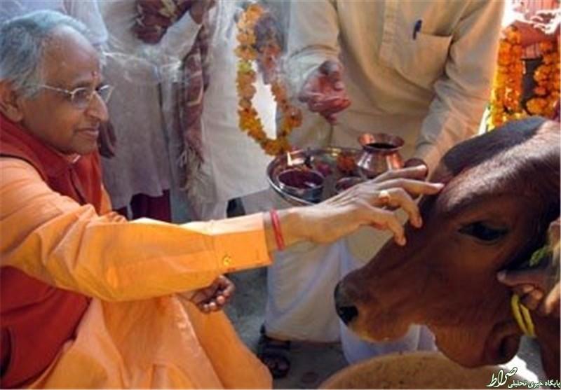 بهانه هندوها برای قتل مسلمانان +تصاویر