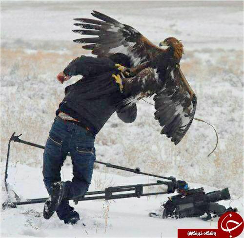 عقابیکه به عکاس هم رحم نکرد+تصاویر
