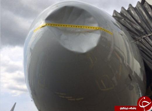 پرنده ای که هواپیما را اوراق کرد!+ عکس