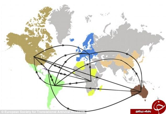 شناسایی نقشه ویروس ایدز در جهان +عکس