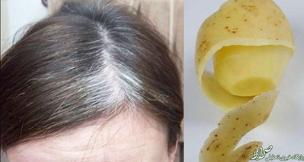 «سیب زمینی» موهایتان را سیاه میکند +عکس