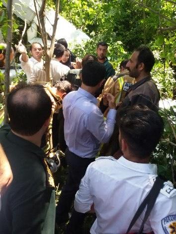 عکس/ سقوط هواپیمای آموزشی در رشت
