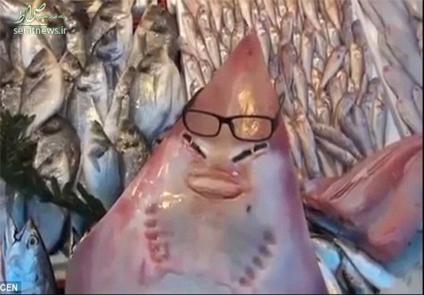 ماهی عجیب حیوان عجیب اخبار ترکیه