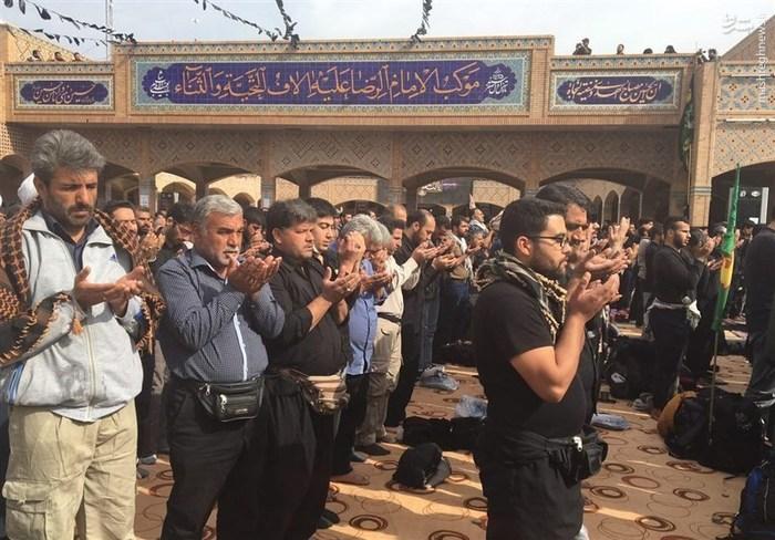 طولانیترین نماز جماعت جهان از نجف تا کربلا+تصاویر