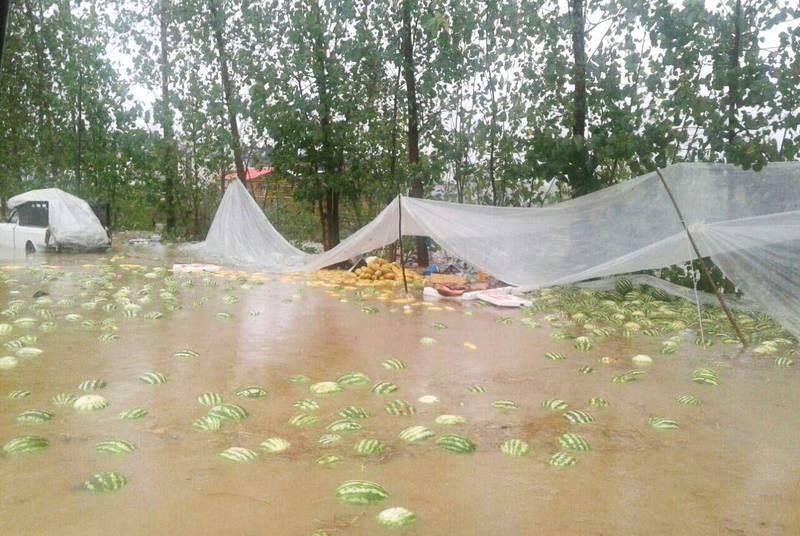 بارش باران در گیلان و ایجاد بحران + عکس