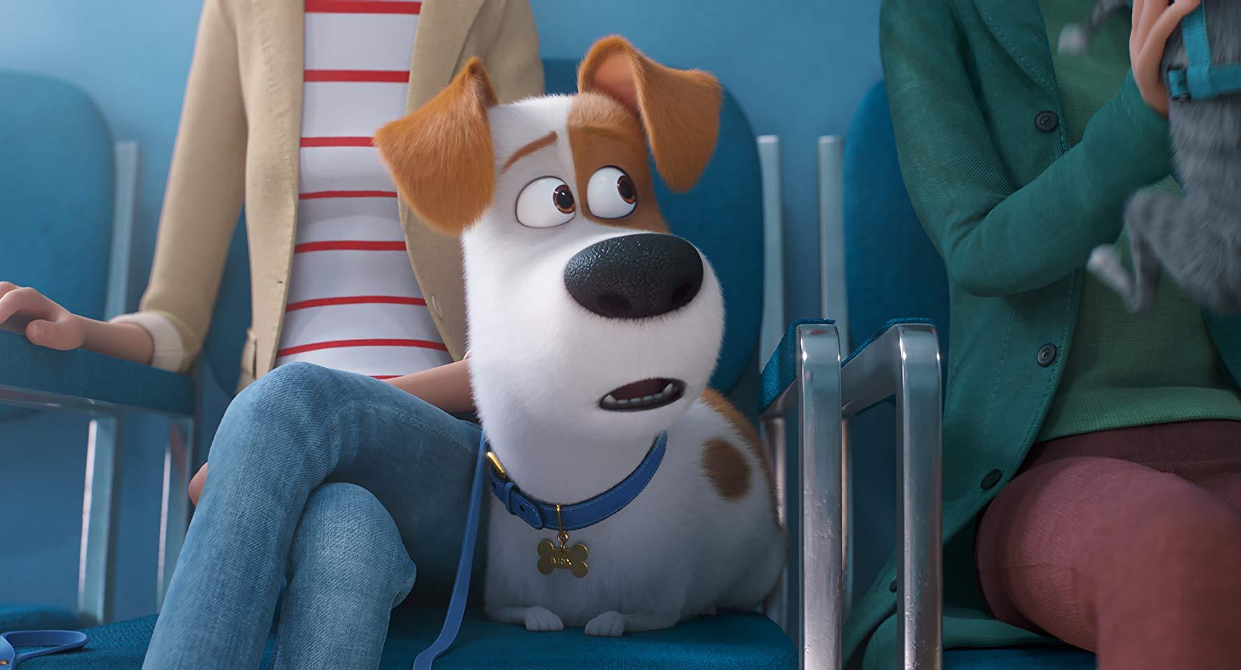 نخستین تصاویر از انیمیشن زندگی پنهان حیوانات خانگی 2 منتشر شد