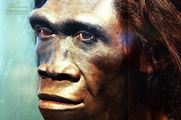 کشف دندان 240 هزار ساله توسط باستان شناسان چینی