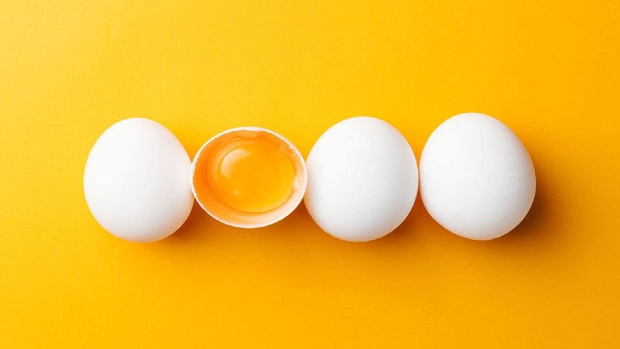 قیمت هر شانه تخم مرغ چند است؟