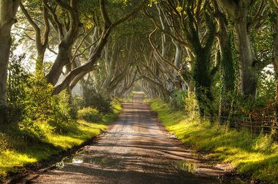 حصار تاریک در ایرلند شمالی