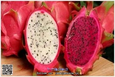 Dragon Fruit میوه اژدها زادگاه این میوه مکزیک و مرکز و جنوب آمریکاست و به خاطر شکل و رنگش به این نام از آن یاد میشود. این میوه دارای سه رنگ سفید و صورتی و قرمز، و طعم آن شبیه گلابی است. با برگهای این درخت چای نیز تهیه میشود.