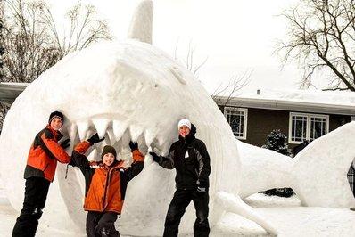 «آستین»، «کانر» و «تروور» سه برادری هستند که علاقه عجیبی به ساختن آدمکهای برفی دارند.