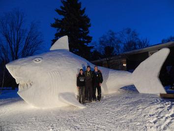 آنها برای ساخت این مجسمههای برفی خیلی جدی کا کردند به طوریکه تنها برای ساختن لاکپشت برفی بیش از ۳۰۰ ساعت کارکردند.