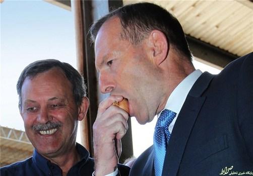 تونی ابوت، نخستوزیر سابق استرالیا، پیازی را با پوست گاز میزند.