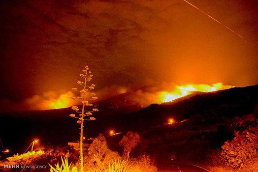 ادامه آتش سوزی جنگل های اسپانیا (EPA)
