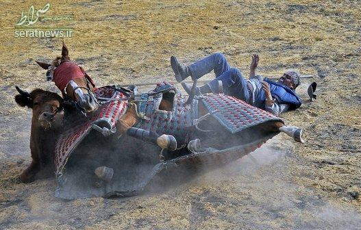 افتادن اسب روی گاو نر در جریان آموزش گاوبازی در کلمبیا