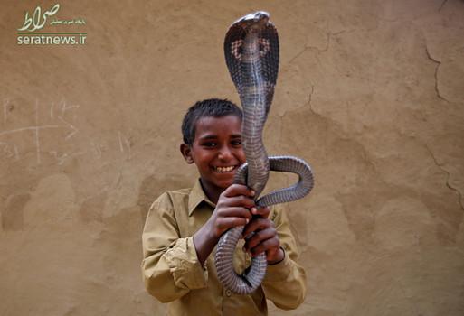 بازی پسربچه هندی با مار کبری در اوتارپرادش