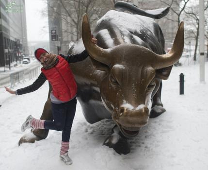 یک گردشگر در کنار گاو والاستریت - نیویورک، آمریکا