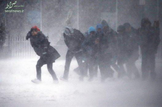 افراد گرفتار در بوران و برف - بوستون، آمریکا