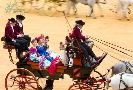 کالسکه سواری در میدان گاوبازی - سویل، اسپانیا