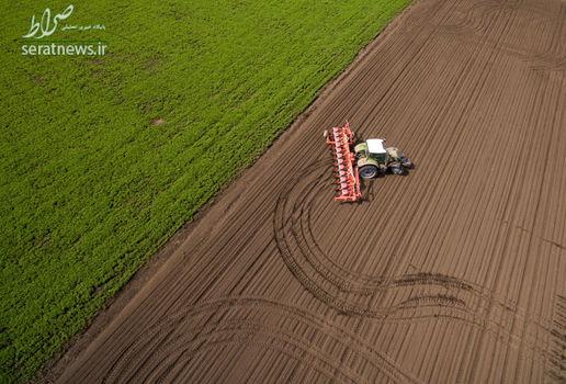کشت و زرع بهاری در مزارع اتحادیه کشاورزی کوبان در ناحیه کراسنودار روسیه